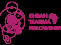 Logo_TRAUMA_FELLOW
